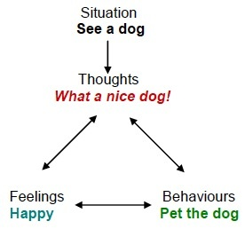 A diagram that shows thoughts, feeling, and behaviors when someone reacts to a situation they do not fear.