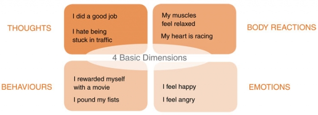 chart: dimensions of mental health
